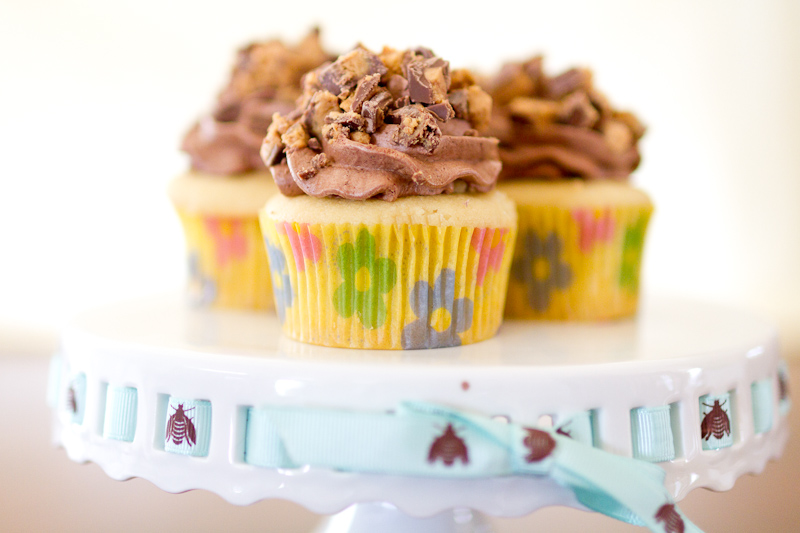 Vanilla Cupcakes with Chocolate Frosting and PB Mousse Filling